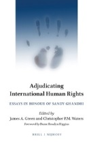 Adjudicating International Human Rights