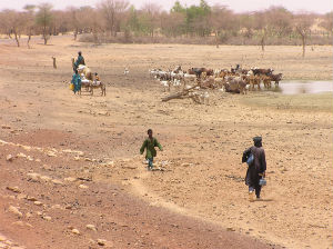 African populations are particularly vulnerable to extreme weather events