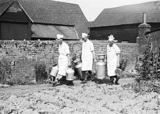 Milkers at the farm of J. S. Gardner, Maidenhead, Berkshire, 1934