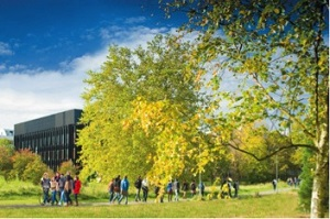 Postgraduate study in the School of Arts and Communication Design - in the beautiful parkland campus of the University of Reading