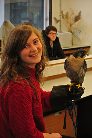 Student with peregrine