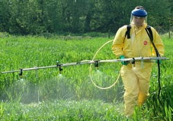 Man spraying crops