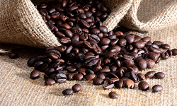 colour photograph of coffee beans spilling from a hessian sack