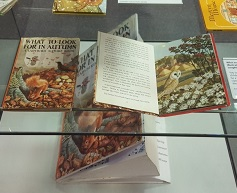 Exhibits from the My Favourite Ladybird exhibition