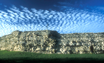 The Roman town walls at Silchester