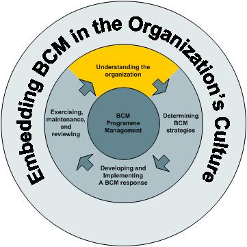 Life cycle 2 understanding the organisation
