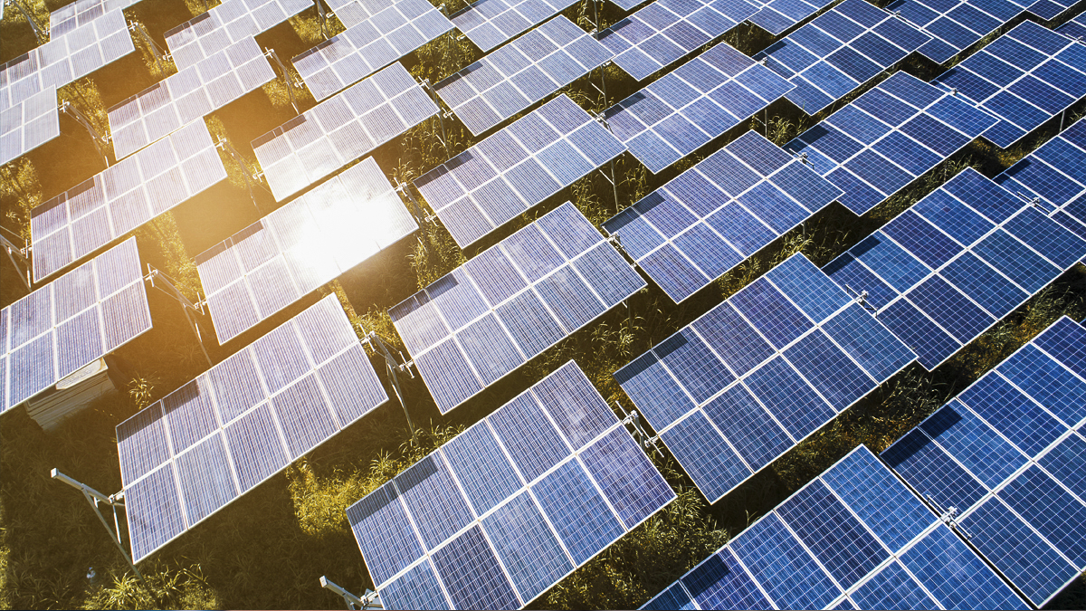 Close up of field of solar panels