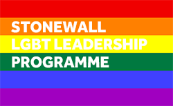 Stonewall development programmes